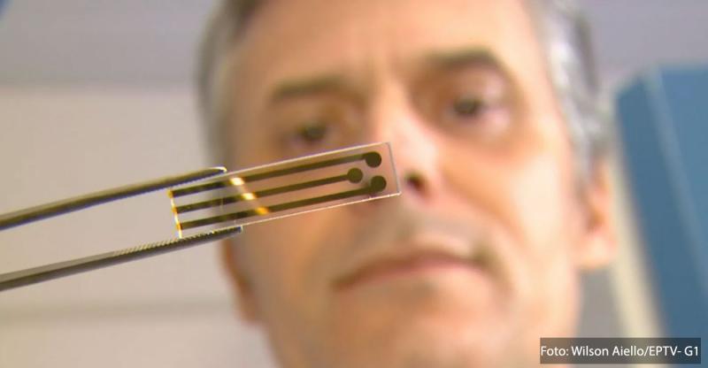 USP/São Carlos cria teste rápido que detecta vírus da zica.